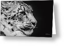 Snow Leopard Greeting Card by Jeff Swanson