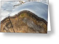 Snow On A Log Greeting Card