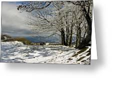 Snow On Beech Mountain  Greeting Card