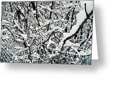 Snow On Branches Greeting Card