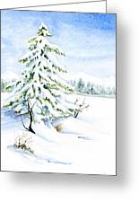 Snow On Evergreens Greeting Card