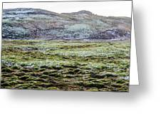 Snow On Moss Greeting Card