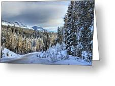 Snow On The Bow Valley Parkway Greeting Card