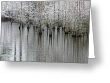 Snow On The Cypresses Greeting Card