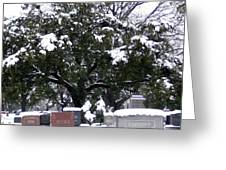 Snow On The Graves Greeting Card