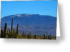 Snow On The Mountain Greeting Card
