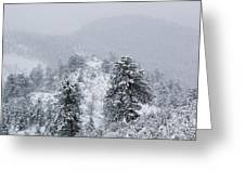 Snow On The Ridge In The Pike National Forest Greeting Card