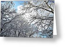 Snow On Trees Greeting Card