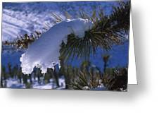Snow Ornament - Joshua Tree Greeting Card