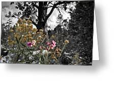 Snow Pea Greeting Card