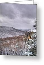 Snow Remoteness Greeting Card