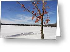 Snow Ripple Greeting Card