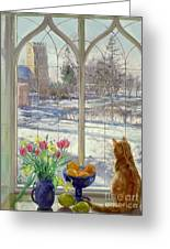 Snow Shadows And Cat Greeting Card