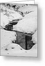 Snow Stream 2 Greeting Card