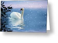 Snow Swan Swim Greeting Card
