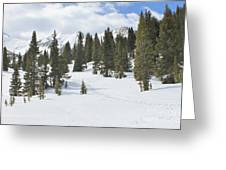 Snow Trail Greeting Card