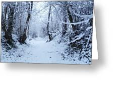 Snow Walk Greeting Card