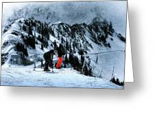 Snowbird Greeting Card