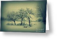 sNOWday  Greeting Card
