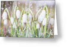 Snowdrops In The Garden Of Spring Rain 4 Greeting Card