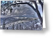 Snowfall Covers Northern Arizona For Christmas Greeting Card