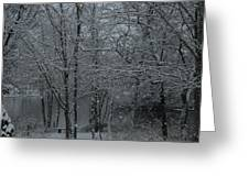 Snowfall On The Creek Greeting Card