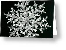 snowflake I Greeting Card