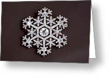 snowflake II Greeting Card