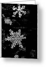 Snowflake Jewels Greeting Card