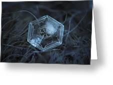 Snowflake Photo - Hex Appeal Greeting Card