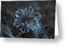 Snowflake Photo - The Core Greeting Card