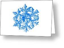 Snowflake Vector - Gardener's Dream White Version Greeting Card