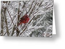 Snowing Greeting Card