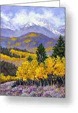 Snowing In The Mountains Greeting Card