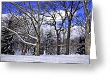 Snowman In Central Park Nyc Greeting Card