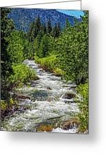 Snowmelt On The Carson Greeting Card