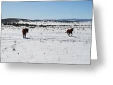 Snowplay Greeting Card