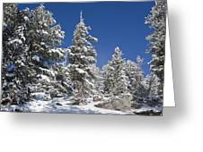 Snowscape 2 Greeting Card