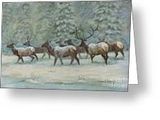 Snowstorm       Elk Herd Greeting Card