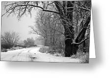 Snowy Branch Over Country Road - Black And White Greeting Card