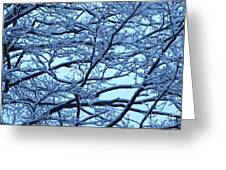 Snowy Branches Landscape Photograph Greeting Card