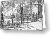 Snowy Cattle Gate Greeting Card