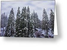 Snowy Christmas At Big Bear Lake Greeting Card