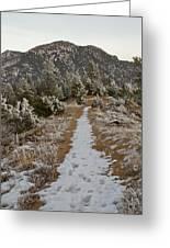 Snowy Colorado Trail Greeting Card