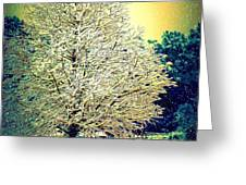 Snowy Days Greeting Card by Donna Bentley