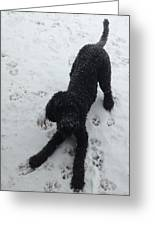 Snowy Dog Greeting Card