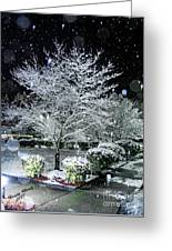 Snowy Dogwood Tree At Night Greeting Card