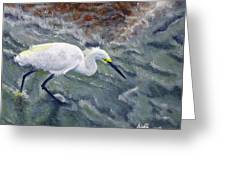 Snowy Egret Near Jetty Rock Greeting Card