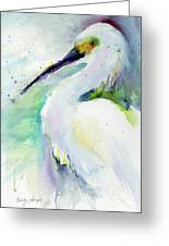 Snowy Egret On Lido Beach Greeting Card