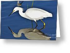 Snowy Egret Reflection Greeting Card